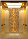 رفاهية مقصور مسافر مصعد ([أون-فيكتور])