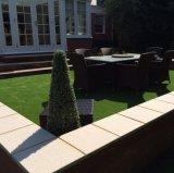 Jardín, hierba del jardín, decoración casera (L40-B3)
