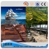 Groupe électrogène diesel électrique silencieux du marché 200kw de la Chine (Y3)
