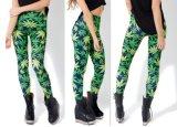87% Nylon und 13% Spandex/Lycra Qualitäts-preiswerte Großhandelsfrauen-Gymnastik-Strumpfhosen