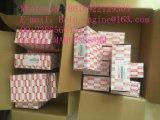 De Kleppen van de inham en van de Uitlaat voor de Motor 4jb1t/4jg1 van het Graafwerktuig Isuzu (89413327501/89424787501)