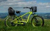 大きい割引脂肪質のタイヤの電気バイク