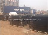 China dekorative Belüftung-überzogene schwarze bearbeitete Wohnschienen-Stahlfechten