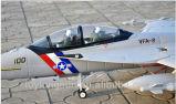 aviões do rtf F18 RC do brinquedo do controle de rádio de 12CH 2.4G