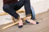 Customedデザイン人の綿のソックスのSilicionのゲルのかかとデザインのローカットのソックスのボードのソックス
