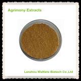 Extractos naturales del Agrimony de la alta calidad