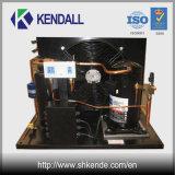Unidad de condensación refrescada aire con el compresor hermético del desfile de Copeland