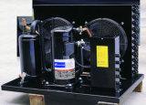 Unidade de condensação de Copeland do compressor de Copeland do compressor para o quarto frio
