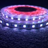 UL LED 5050 indicatore luminoso del nastro LED dei 60 LED