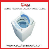 Professionele Vervaardiging van de Plastic Vorm van de Wasmachine in China