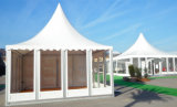 De openlucht 5X5m pvc Verfraaide Tent van de Pagode met de Deur van het Glas
