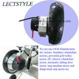 24V 120rpm LichtgewichtMotor van de Rolstoel van de Macht met Brushless Motor van de Hub