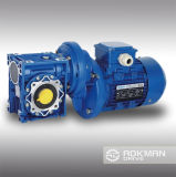 Aokman RV Reducer mit Motor Combination