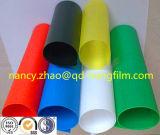 애완 동물 엄밀한 필름의 다채로운 상자 접히기