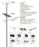 10-12 Mの太陽風ハイブリッドLEDの街灯