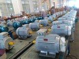 Motor eléctrico de la inducción Squirrel-Cage asíncrona trifásica de la CA de Ie2 0.75kw-4p para la bomba de agua, compresor de aire