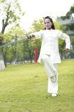 Vêtement occasionnel de pratique en matière de Wudang Tai de Taoism de systèmes liquides Long-Sleeved de Chi