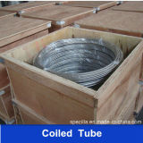 304 316 Steel inoxidable Welded Coil Tube pour Boiler