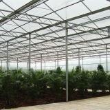 Serra di vetro di vendita 2016 portata calda di agricoltura della multi per i fiori
