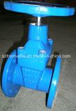 Válvula de puerta asentada metal del arrabio BS5163