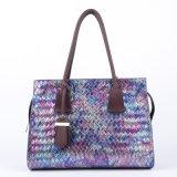 De nieuwe Handtas van de Dames van de Manier Pu van de Ontwerper Kleurrijke (wp1012-1)