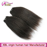 卸売価格のXblのバージンのインドのねじれた直毛
