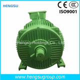 Ye3 5.5kw Three-Phase Cast Iron Induction Electric Motor