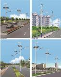 10-12 hybrides LED Straßenlaternedes m-Solarwind-