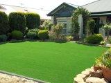 庭の景色のための常緑の多色刷りの人工的な泥炭