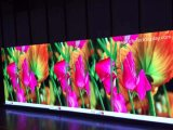 P2.5 HD Indoor Full Color LED Wall (druckgießenschrank 480*480mm)