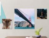 عالة يزيل حجم الصورة أو صورة بسهولة مرغوب نوع خيش طبعة