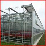 Invernadero de cristal multi de Commerical Venlo del palmo de China para la venta