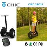 Scooter debout électrique d'équilibre adulte d'individu à vendre avec la grande roue 2 20 pouces
