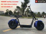Popular Harley Style Electric Scooter with 2 Seater and Backrest