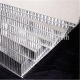 El panel de aluminio de Sadwich del panal (HR46)