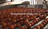 Máquina de rellenar de la cadena de producción de la goma de tomate/del jugo de tomate