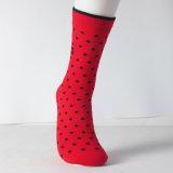 Zoll des glücklichen neuen Jahr-2017 färbte ausdehnende Kleid-Socke der großen Männer