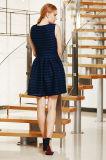 Neue Form-spezielles Streifen-Kleid mit Wandschrank-Kellerfalte