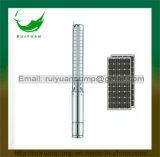 Hochwertige Gleichstrom-schwanzlose wassergefüllte Gleichstrom-Sonnenenergie-versenkbare Wasser-Pumpe mit MPPT Controller