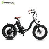 Verkaufsschlager-Erwachsener 20inch weg vom Straßen-Zeit-Maschinen-elektrischen Fahrrad