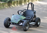 l'azionamento di asta cilindrica senza spazzola 800W 48V 20ah mini va Kart (Cocokart)