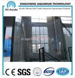 Prijs van de Muur van het Venster van aquariums de Acryl Materiële