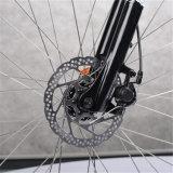 Das berühmte MTB elektrische Fahrrad mit versteckter Batterie (RSEB-304)