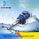 Xinglongの進歩的なキャビティ単一ねじポンプ