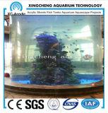 Projeto acrílico redondo do restaurante do aquário