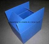 Коробки гофрированные /PP пластичные /Cutting коробок яичка умирают печатание /Screen
