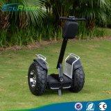 Vagone per il trasporto dei lingotti elettrico delle rotelle del motorino E8-2 due di golf di Ecorider con una gomma da 21 pollice
