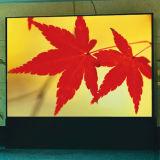 Diodo emissor de luz ao ar livre do RGB P10 que anuncia a tela de indicador impermeável do módulo do quadro de avisos