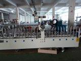 Machine d'emballage décorative d'intérieur de travail du bois de meubles adhésifs chauds de profil de Pur