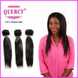 Quercyのニースの品質の人間の毛髪の拡張/まっすぐは束のバージンのモンゴル人の毛を編む